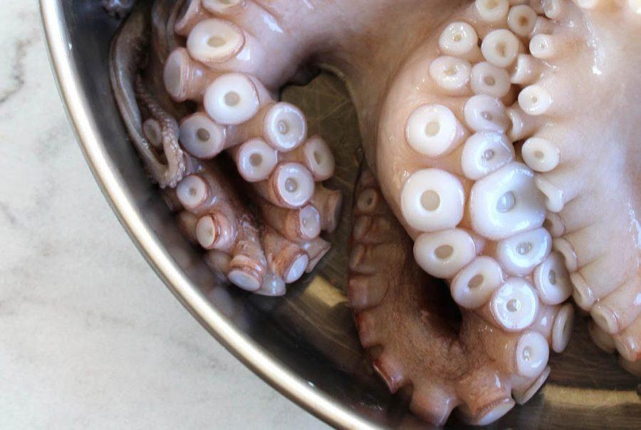 Oktapodi Krasato